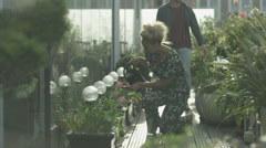 4K Young romantic couple water plants & look out at view in apartment garden Stock Footage