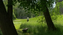 Farmer Mows Fresh Green Grass in the Meadow Trees on a Sunny Day Stock Footage