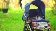 Baby and mother in nature Stock Footage