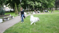 Woman walking with her big fluffy white dog in public park place Stock Footage