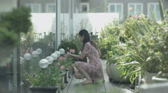 4K Woman watering plants & looking out at the view in city rooftop garden Stock Footage