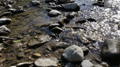 Waves against river flow rocky view with sunlight glimmering on the water Stock Footage