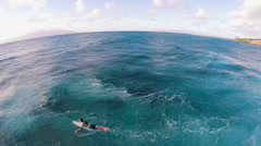 Surfer paddling out in Hawaiian Pacific Island Ocean Water to Catch a Wave Stock Footage