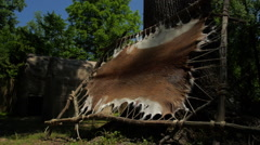Native Americans - Deer Pelt hide Stock Footage