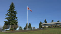 Canadian flag fluttering in the breeze in the park - stock footage