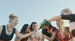 Happy girl clinking glasses at bride's hen party by the lake on the beach. Slow - stock footage