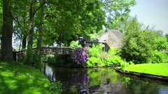 Duck in Giethoorn Stock Footage