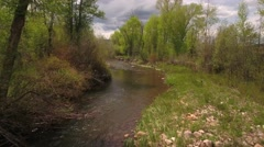 Gorgeous aerial shot above the river in green springtime Stock Footage