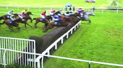 Racehorses jumping steeplechase fence Stock Footage