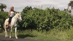 Young woman riding a horse on an asphalt road Stock Footage