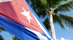 Cuban Flag Palm Tree Stock Footage