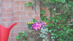 Garden - hanging basket - watering can Stock Footage