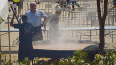 Chefs For An Event Outdoors - stock footage