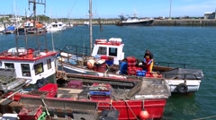 Fishing Boat  Wexford, Ireland Stock Footage