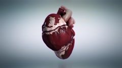 Rotating view of pulsating heartbeat. - stock footage