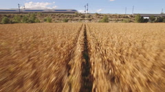 Fast train near cultivated corn field Stock Footage