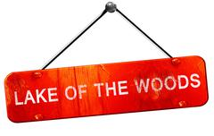 Lake of the woods, 3D rendering, a red hanging sign - stock illustration