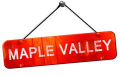 maple valley, 3D rendering, a red hanging sign - stock illustration