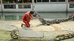 Professional trainers perform risky stunt show with big fresh water crocodile Stock Footage
