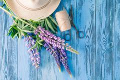 Beautiful purple lupine with leaves, scissors and hemp threads. Top view - stock photo
