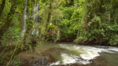 Pristine waterfalls in cloudforest running into an Andean river  Stock Footage