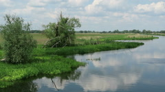 Havel river in summer. Brandenburg - Germany Stock Footage