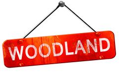 woodland, 3D rendering, a red hanging sign - stock illustration