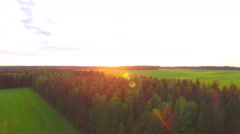 Aerial View. Flying over the field of forest at sunset with the sun's rays. Stock Footage