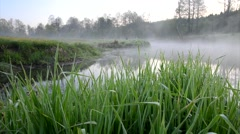 grass and mist over the river panorama - stock footage
