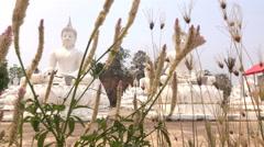 White Buddha Temple Wat Bung Khi Lek lot. Stock Footage