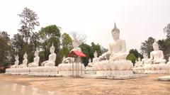 Temple Wat Bung Khi Lek Stock Footage