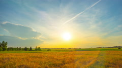 Rural summer landscape and sunset, panoramic time-lapse - stock footage