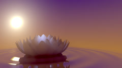 meditation lotus on water with sun loop 3d animation - stock footage