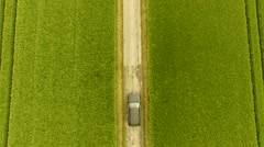 AERIAL: Car on rural road in grain field Stock Footage