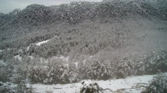 Aerial footage: mystic snowy valley and forest Stock Footage