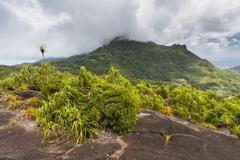 Granite rock at Mount Copolia in Mahe, Seychelles Stock Photos