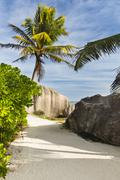 The footpath to Anse Source D'Argent in La Digue, Seychelles with palm trees  Stock Photos