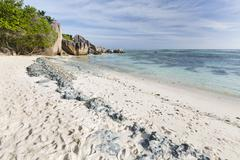 Remainders of former coral reefs in the beach sand in La Digue, Seychelles Stock Photos
