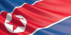Flag of North Korea waving in the wind. Piirros