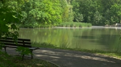 Wooden Bench by the Lake in Park Fresh Green Trees Sunny Summer Day Small Stock Footage