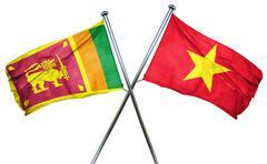 Sri lanka flag with Vietnam flag, 3D rendering - stock illustration