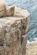 Section of Otter Cliff in Acadia National Park Stock Photos