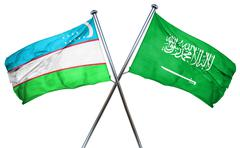 Uzbekistan flag with Saudi Arabia flag, 3D rendering Stock Illustration