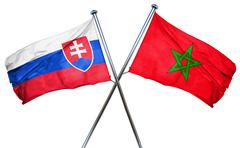 Slovakia flag with Morocco flag, 3D rendering - stock illustration