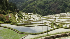 Time lapse of mountain and terraced rice field Stock Footage