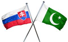 Slovakia flag with Pakistan flag, 3D rendering Stock Illustration