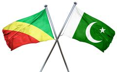 Congo flag with Pakistan flag, 3D rendering - stock illustration