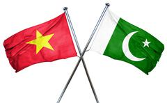 Vietnam flag with Pakistan flag, 3D rendering - stock illustration