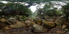 360VR Natural flowing river creek outdoors rainforest virtual reality Stock Footage