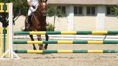Horse jumping on a hurdle Stock Footage